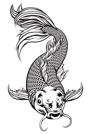 An original illustration of a koi carp fish in a vintage woodcut style