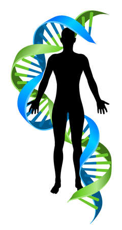 A conceptual graphic of a human person figure silhouette with a double Helix DNA genetics chromosome strand Stock Illustratie
