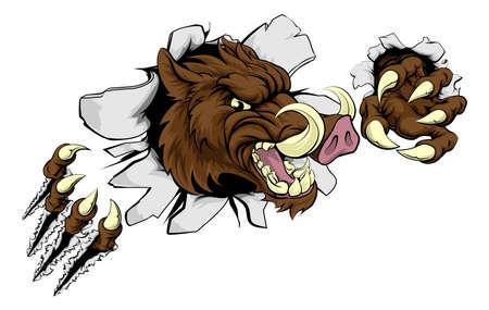 Een wild zwijn of razorback wrattenzwijn cartoon sport mascotte scheuren door een muur met zijn klauwen
