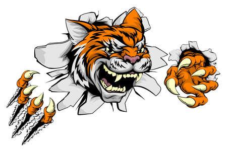 Una mascota de los deportes animales media tigre que rasga a través del fondo con sus garras Foto de archivo - 61100294
