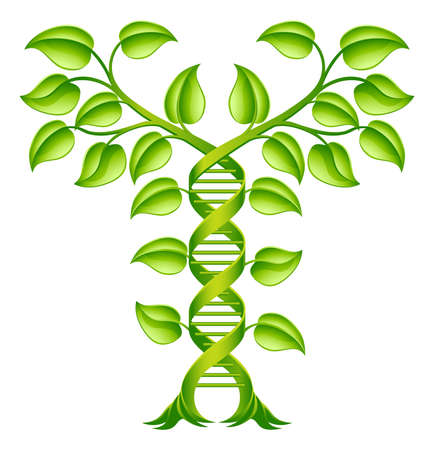 DNA Plant Double Helix Concept, can refer to alternative medicine, crop gene modification or other healthcare or medical theme. Ilustracja