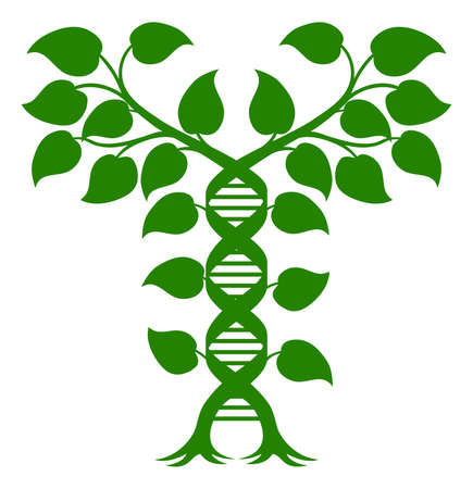 DNA Plant Double Helix Concept, can refer to alternative medicine, crop gene modification or other healthcare or medical theme.  イラスト・ベクター素材