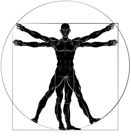 A figure man anatomy illustration