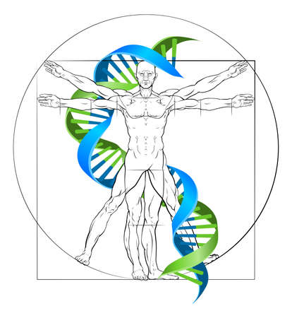 DNA Vitruvian man medical research concept with double helix and perfectly proportioned human figure
