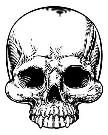 Crâne dans une xylographie dessinée rétro main millésime gravé ou gravé de style