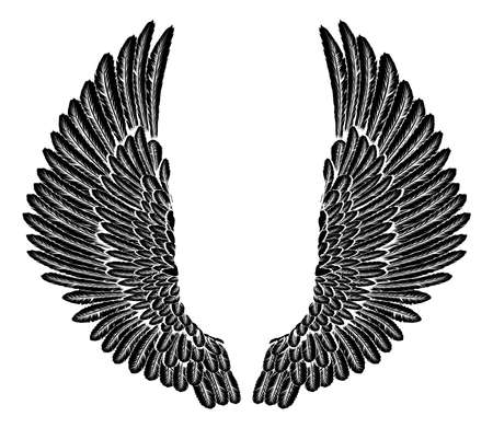 Spread set of etched woodcut vintage style wings