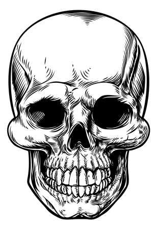 Skull drawing in a vintage retro woodcut etched or engraved style