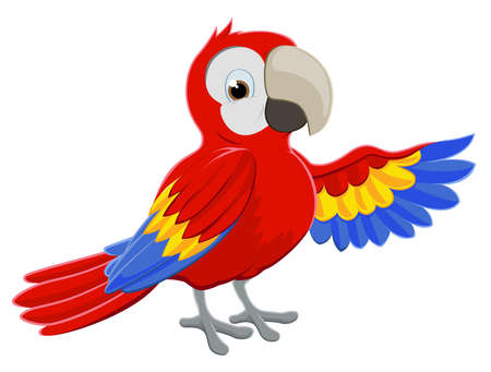 Cartoon red parrot bird character pointing with its wing Illustration