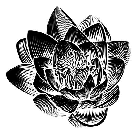 A sinle water lily lotus flower in a vintage woodcut engraved etching style Illustration