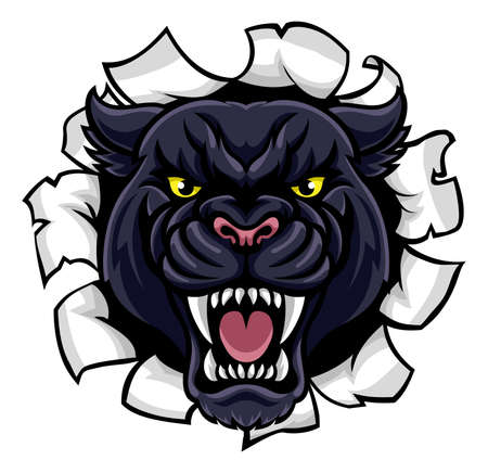 A black panther angry animal sports mascot breaking through the background Vectores