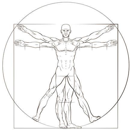 Vitruvian Man Illustration
