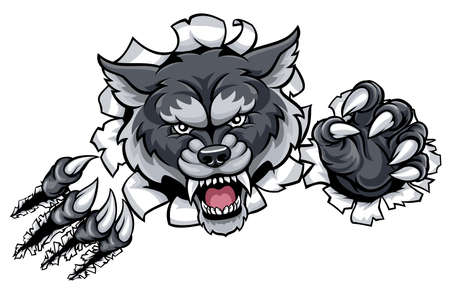 A wolf angry animal sports mascot and breaking through the background with its claws Çizim
