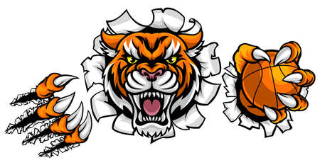 Tiger Holding Basketball Ball Breaking on white background, vector illustration.