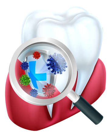 Magnifying glass with tooth vector icon.