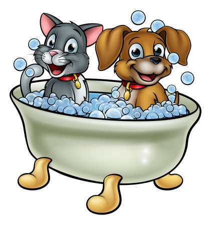 Cartoon Cat and Dog in Bath Vector illustration.