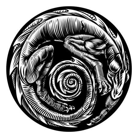 Dragon Tattoo Design Illustration