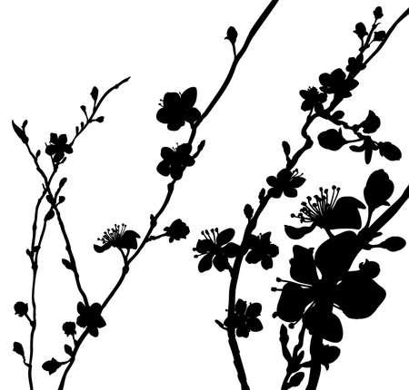 Perzik of kersenbloesem bloeit boomsilhouet. Abstract patroon van de de lente het bloemenmanier van de achtergrondpatroon Japanse of Chinese stijl.