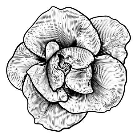 Uma única flor de xilogravura rosa em um estilo vintage gravado gravura retro
