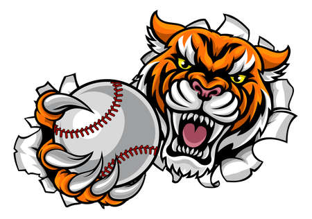 Tiger Holding Baseball Ball Breaking Background