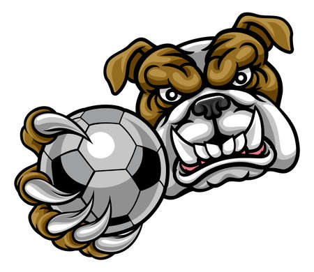 A bulldog angry animal sports mascot holding a soccer football ball
