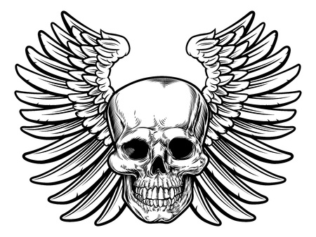 Winged skull drawing isolated on a white background Illustration