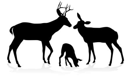 Deer animal family silhouettes fawn, doe and buck stag Illustration
