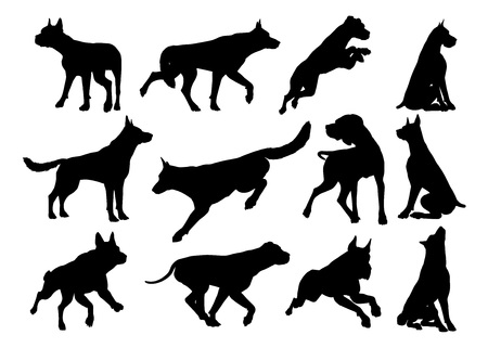 A set of detailed animal silhouettes of a pet dog Çizim
