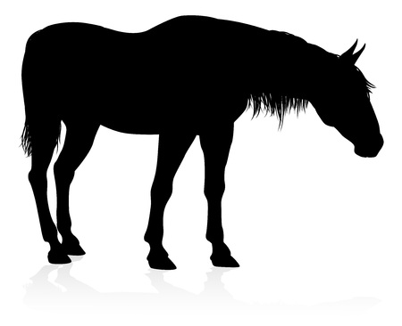 A high quality very detailed horse in silhouette