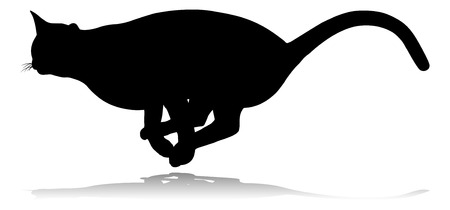 A silhouette cat pet animal detailed graphic Vettoriali