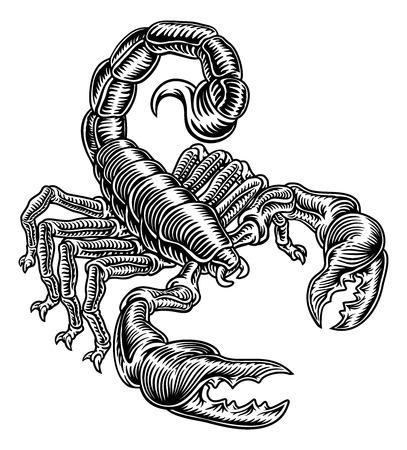 Scorpion Scorpio Zodiac Sign Woodcut Design Illustration