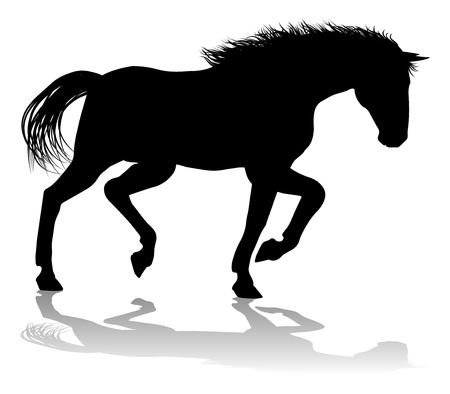 Horse Silhouette Animal Vector Illustration