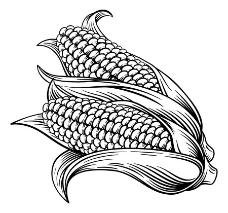 Maiskolben-Mais-Holzschnitt-Radierung Illustration Vektorgrafik