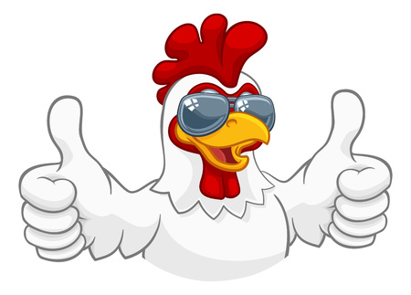 Chicken Rooster Cockerel Bird Sunglasses Cartoon Illustration
