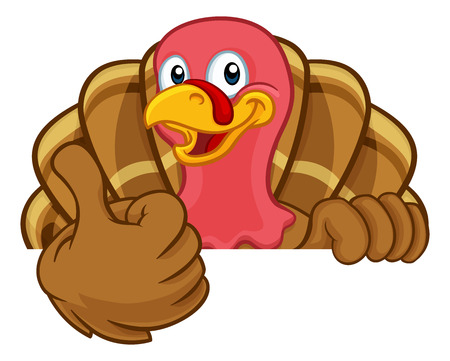Turkey Thanksgiving or Christmas bird animal cartoon character peeking over a background sign giving a thumbs up Illustration