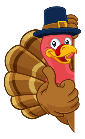 Turkey Pilgrim Hat Thanksgiving Cartoon Character Illustration