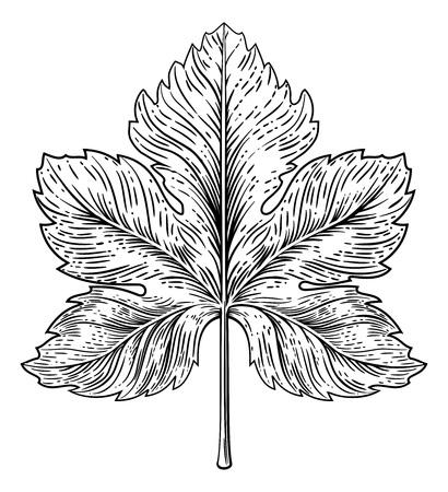 Grape Leaf Design Element Woodcut Engraving Style