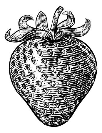 Strawberry Vintage Woodcut Illustration Ilustrace