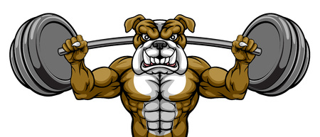 Bulldog Mascot Weight Lifting Body Builder