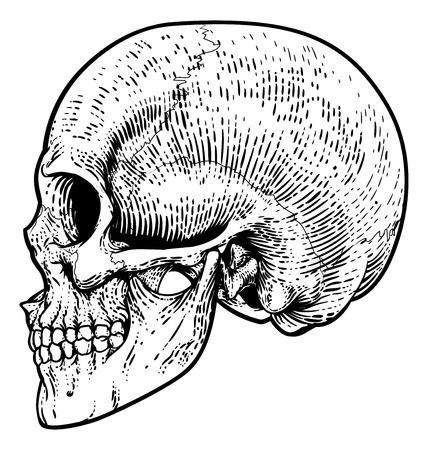 Skull Grim Reaper Vintage Woodcut Illustration Vettoriali