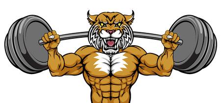 Wildcat Mascot Weight Lifting Body Builder Illusztráció