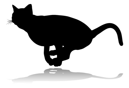 Silhouette Cat Pet Animal Stok Fotoğraf - 129033019