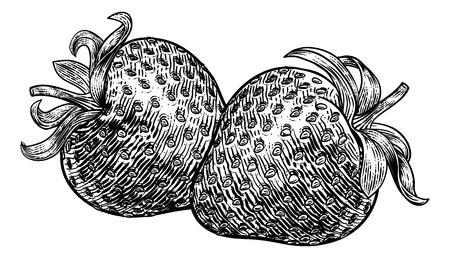 Strawberry Vintage Woodcut Illustration Illustration