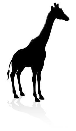 Giraffe Animal Silhouette Stok Fotoğraf - 130165802