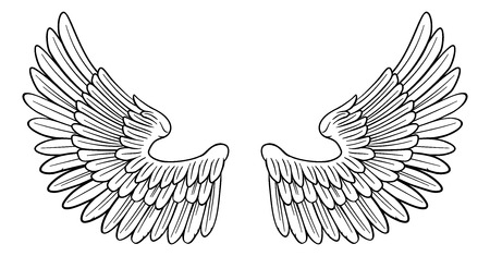 Pair of Angel or Eagle Bird Wings Çizim