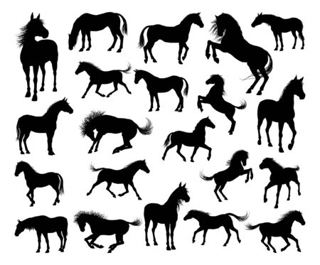 Horse Silhouettes Illustration