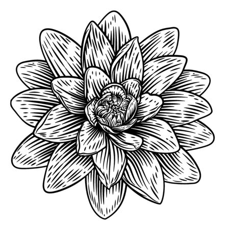 Lotus Flower Woodcut Water Lilly Engraved Etching