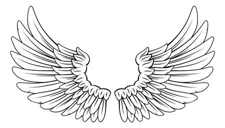 Wings Angel or Eagle Feathers Pair Illustration Illustration