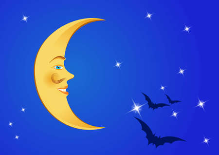 night time: moon in the night sky with stars and bats
