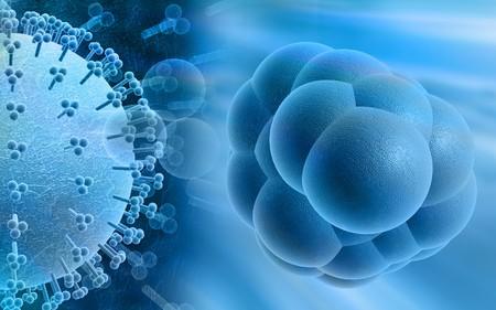 animal cell: Las c�lulas madre y el virus de la gripe