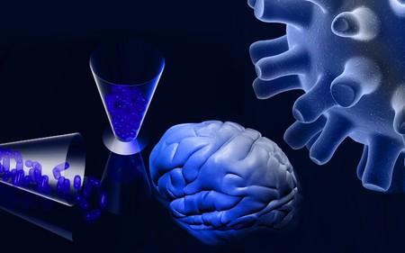 Human brain, capsules and virus  photo